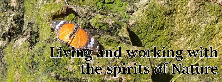 Living and working with the spirits of Nature